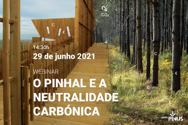 """Webinar """"O pinhal e a neutralidade carbónica"""""""