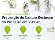 Última ação de demonstração - Prevenção do Cancro Resinoso do Pinheiro
