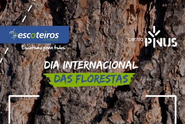 Escoteiros de Portugal e Centro Pinus celebram Dia Internacional das Florestas