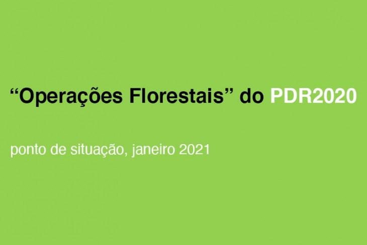 """Execução do PDR2020 """"Florestal"""""""
