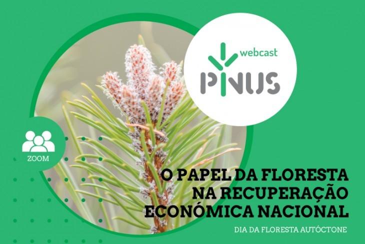 """PINUS Webcast """"O papel da floresta na recuperação económica nacional"""""""