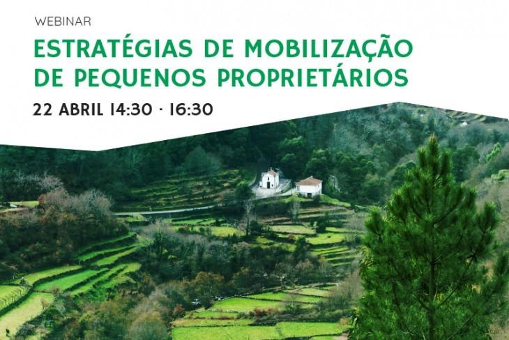 WEBINAR – ESTRATÉGIAS DE MOBILIZAÇÃO DE PEQUENOS PROPRIETÁRIOS